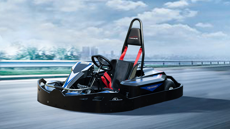 performance version electric go kart