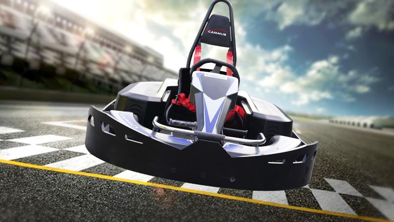 sport version electric go kart